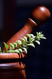 Artemisia in erboristeria